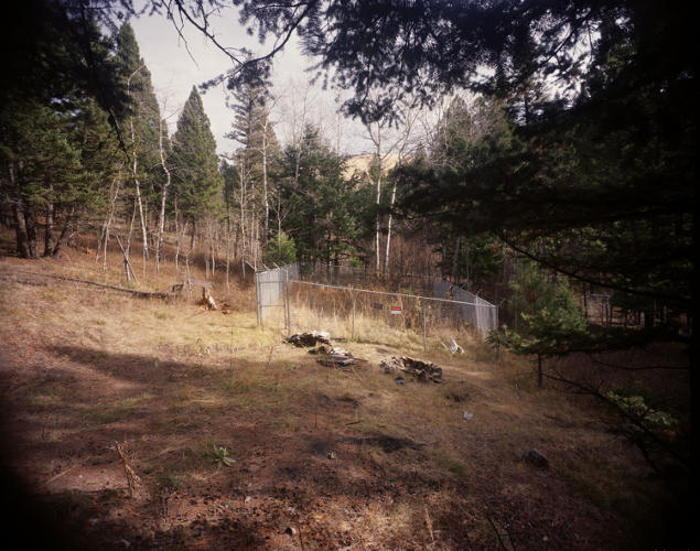 <p>He also photographed the remote woods where the cabin once stood.</p>