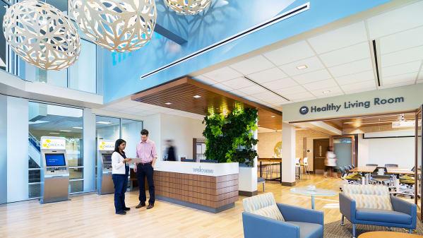 Health Hub Experience Guide
