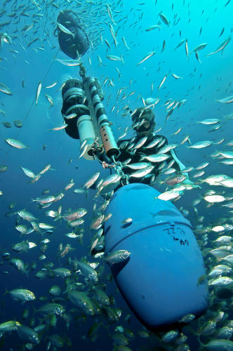 "<p>Continuous ocean monitoring technology is telling us increasing amounts about the oceans. Here, a diver services an acoustic receiver mooring at Australia's Ningaloo Reef that ""reads"" passing tagged fish and animals, then incorportes that information into its Integrated Marine Observing System's massive database of individual and species movements.</p>"