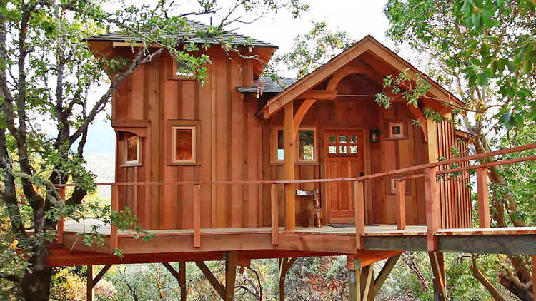 treehouse masters tree houses inside - Treehouse Masters Inside