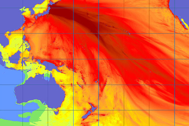 <p>On second thought, this is the year's most frightening infographic: It uses real-time data to give a sense of the jaw-dropping magnitude of the earthquake and tsunami that devastated Japan in March.</p>