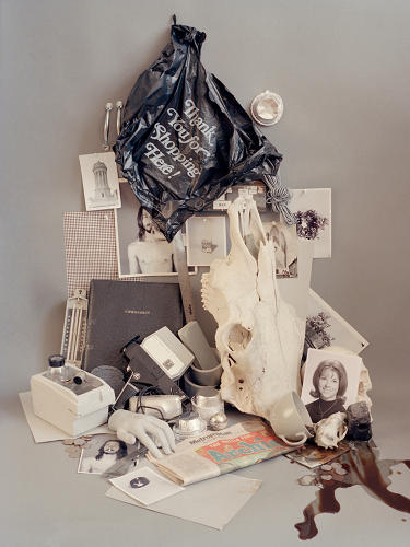 <p>Each still life contains deeper narratives and meanings, developed by the artist as she curates each shot.</p>