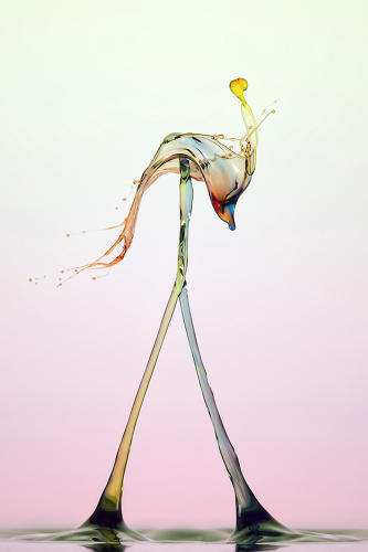<p>In his home studio, Markus Reugels manipulates colored water droplets to create stunning effects. This is an example of what he calls a &quot;double pillar&quot; structure.</p>