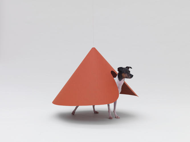 <p>The Hara Design Institute fashioned this wallless shelter for a Japanese Terrier. It can be constructed from a single sheet of heavy paper, hanging from the ceiling, to offer the dog its own territory while providing a unique half-sculpture, half-dog object for the human to enjoy.</p>