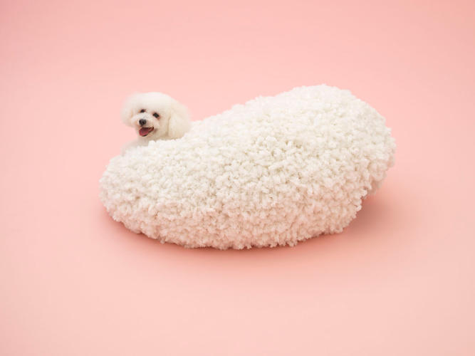 <p>Kazuyo Sejima's piece for the Bichon Frise is meant to resemble the dog itself, right down to the fluffy fur. When they climb inside, the dog completes the structure's shape.</p>