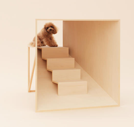 <p>Kenya Hara's own piece is for the Teacup Poodle. It's what he calls a &quot;scale modifier,&quot; a set of stairs that a small dog can run up to see an owner face-to-face.</p>