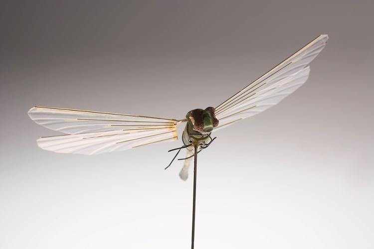 <p>The Insectohopter, a robotic dragonfly used for aerial surveillance in the 1970s.</p>