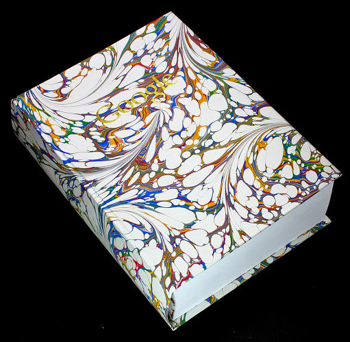 <p>London-based artist Ben West created a dictionary with a Google Image result for every word.</p>