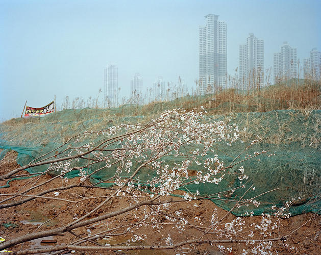 <p>The photos show periphery zones--places where city and nature visibly intersect.</p>