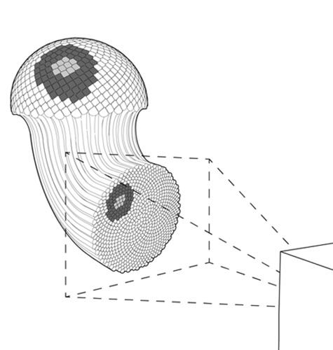 <p>This is a diagram of the 3-D printed display. Once we break free of rectangular screens constraining today's electronics, interactive pixels could scale to almost any object you could imagine.</p>