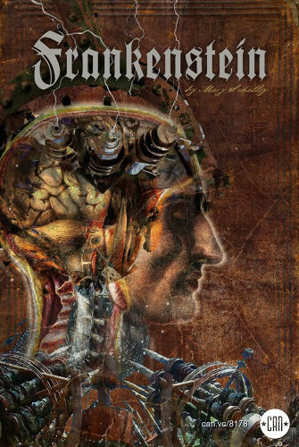<p><em>Frankenstein</em> is one-part classic portraiture, one-part steampunk. - Vince Mattina</p>