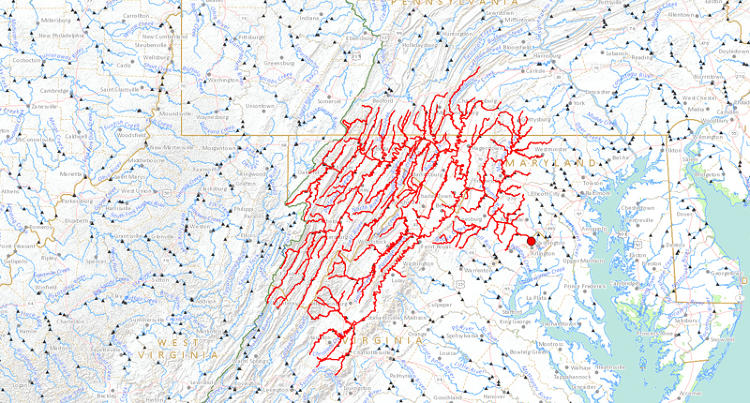 <p>The tributaries of the Potomac River show the drainage patterns of the Appalachian Mountains.</p>