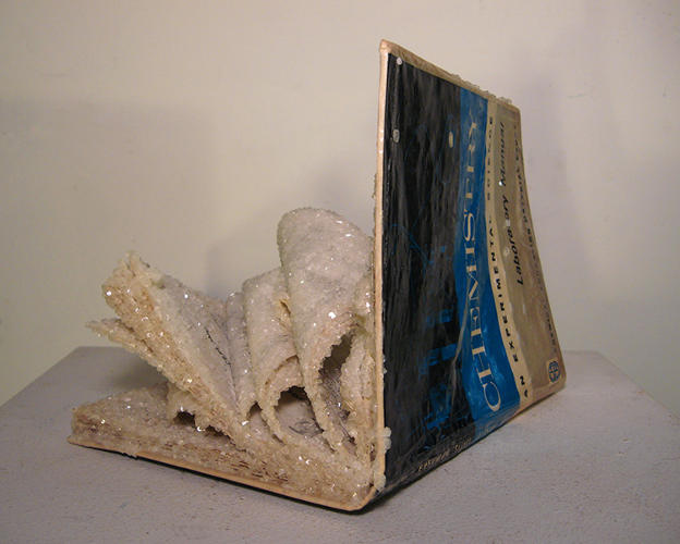 <p>For Arnold, the project at least partly speaks to the decay of the book as an object.</p>
