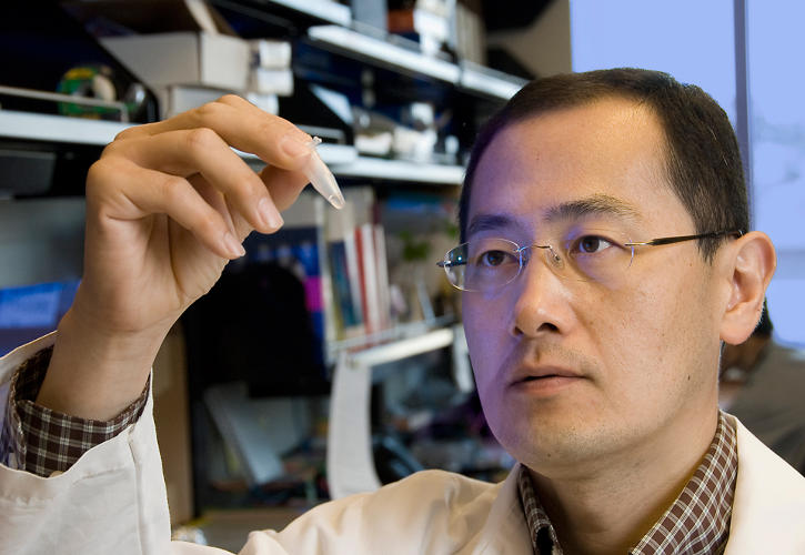 <p><strong>Shinya Yamanaka<br /> </strong>Director of Center for iPS Cell Research and Application, Kyoto University. Senior Investigator, Gladstone Institutes, San Francisco.<br /> <em>For induced pluripotent stem cells.<br /> </em></p>