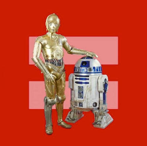 <p>C3P0 and R2D2 for marriage equality.</p>