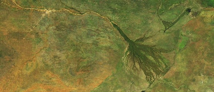 <p>&quot;In Botswana, south-central Africa, you can see the huge reach of the Okavango Delta, where the Okavango River drains into a huge swamp of amazing lushness and biodiversity. Around it are some faint but clear transitions revealing the edges of protected areas, and to its west and north are the stripes of enormous, semi-vegetated sand dunes.&quot;</p>