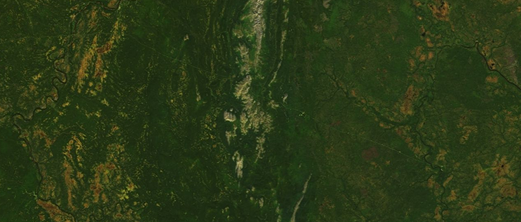 <p>&quot;This imagery is approximately as sharp as what an astronaut on the International Space Station could see with the naked eye. As a rule, if it's visible in the Cloudless Atlas, it's visible from space – on a clear enough day! More human-created features than you might assume are easy to spot. Russia's thick forests provide a good backdrop for spotting human activity. The pale path that crosses this section of the Ural Mountains at a slight angle from west to east is probably an oil or natural gas pipeline.&quot;</p>
