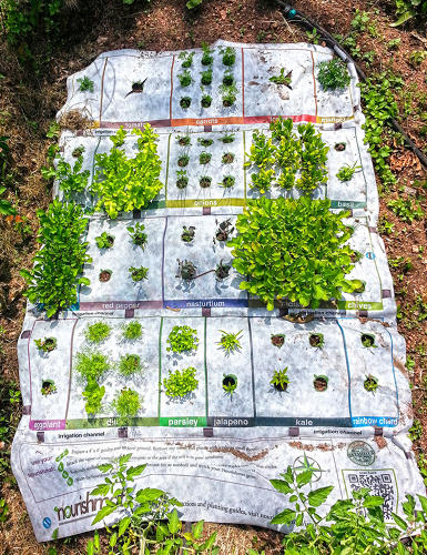 <p>Nourishmat is a four-by-six-foot tarp with holes cut out, labeled so that gardeners know where to deposit seeds for their carrots or radishes.</p>