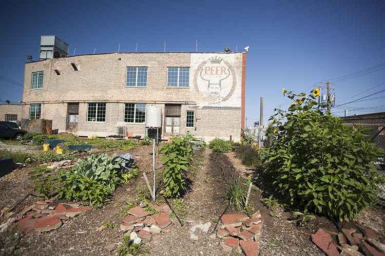 <p>One hundred years ago, Chicago's sprawling stockyards teamed with activity, earning the city the nickname &quot;hog butcher for the world.&quot; Today, Edel is bringing a new kind of food production to the area.</p>