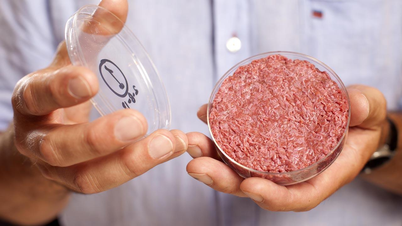 "The World's First Test-Tube Burger Tastes Like ""A Cross Between A Boca Burger And McDonald's"""