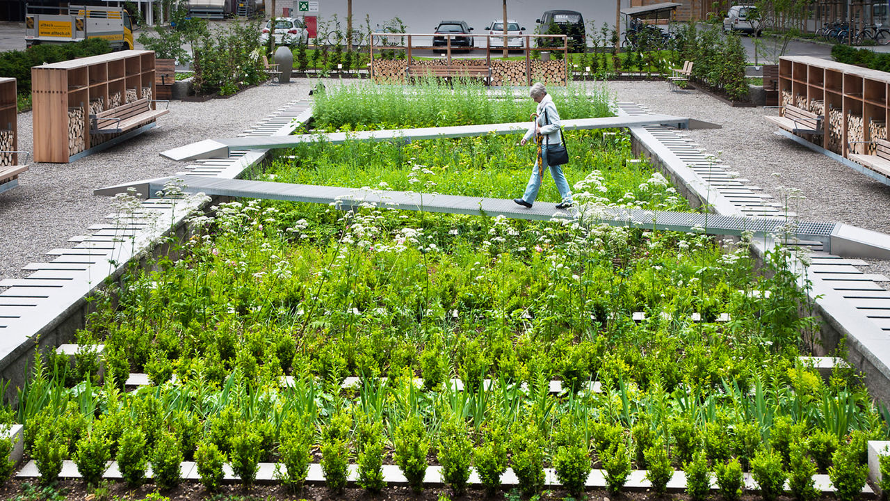 Wonderful A Landscape Architect Redesigns The Medieval Medicinal Garden