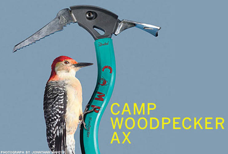 <p> For more than 100 years, Italian sporting firm CAMP made ice axes with straight shafts. &quot;When CAMP came to me, the first thing I did was ask, 'What is the best example of a hammer in nature?'&quot; says designer Franco Lodato. Channeling the woodpecker, Lodato centered the shaft under the ax head and added a slight curve to the spine. Rather than setting the new pick at a near-right angle to the shaft, it was pitched downward, like the bird's beak. The result was a more balanced swing, a more efficient blow, and a best seller for CAMP.  </p>