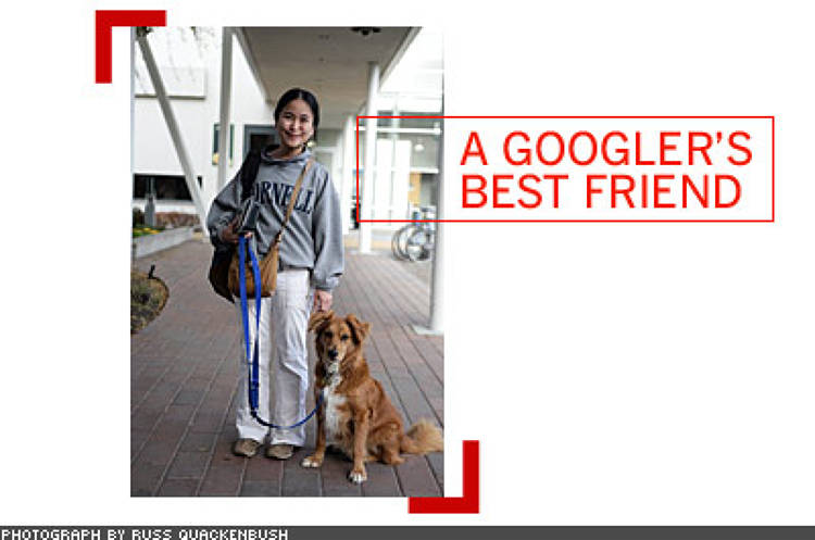 <p> Dogs are fairly common at startups, not at companies as big as Google. As long as the dogs are well behaved, they're welcome at the Googleplex. Here's software engineer Juliana Jaeger and her companion, Newton.  </p>