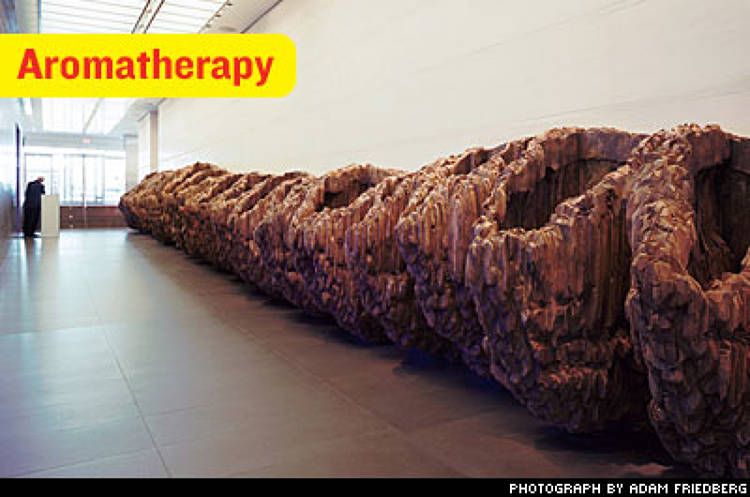 <p>In the first-floor lobby, visitors to this hypertech company are disarmed by a natural cedar installation by German artist Ursula von Rydingsvard. &quot;We wanted it to smell like a farmhouse in Provence,&quot; says Fenwick. &quot;And for people to think, 'What is this weirdness?'&quot;</p>
