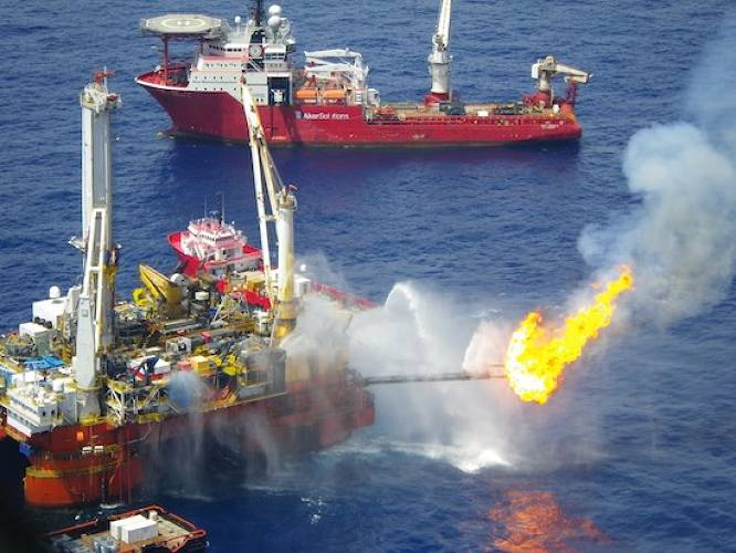 "One of the most controversial cleanup tactics in the Gulf oil disaster is oil burn-off--the practice of rigs burning off spilled oil. Nichols has been working with the Sea Turtle Restoration Project to restrict burn-offs, which are believed to inadvertently burn up sea turtles in ""burn boxes"" along with oil."