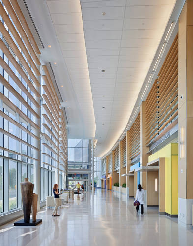 <p>HOK designed the interiors of the University Medical Center of Princeton at Plainsboro to look more like a hotel than a hospital.</p>