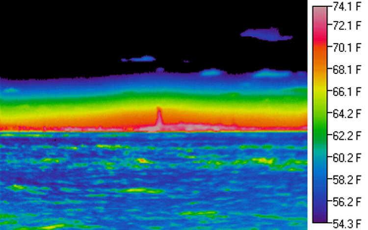 "<p>The water remains relatively cool (blue) all day while the Statue of Liberty warms when exposed to the sun. A haze layer exists near the ground, and the particles and droplets in this layer emit ""longwave thermal radiation"" in the far infrared portion of the spectrum. The haze nearest to the ground is relatively warm while the temperature decreases with altitude.</p>"
