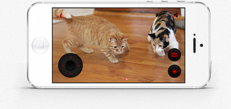 <p>But wait, there's also a laser pointer so you can drive your cat nuts back in Palo Alto while closing deals in New York.</p>
