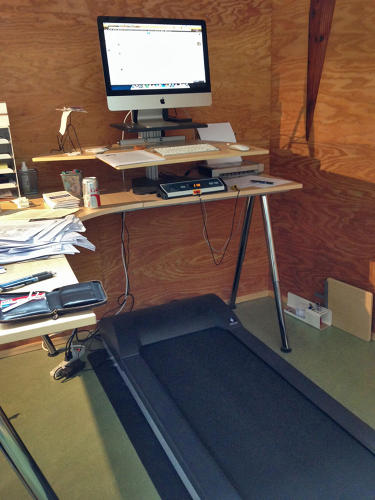 "<p><em>New Yorker</em> writer Susan Orlean is a devotee of the treadmill desk. ""I'm not sitting down at all any more to write.&quot;</p>"