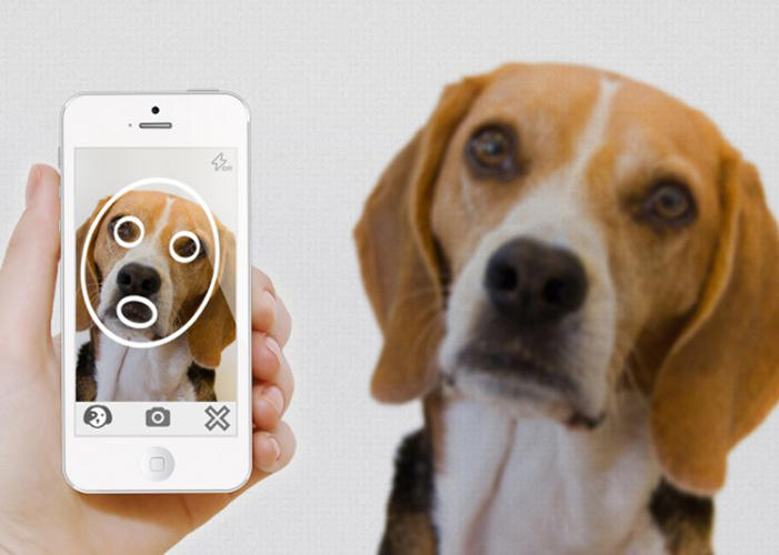 <p>The PiP system uses facial recognition on an unlikely source: your pets.</p>