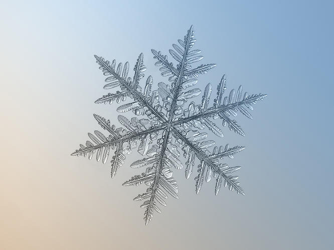 <p>Wilson Bentley, who was the first person to ever photograph a snowflake (in 1885, using a feather to carefully carry a snowflake inside to a microscope after waiting patiently for hours outside), spent a lifetime photographing snowflakes. Klatjov also has no plans to stop.</p>