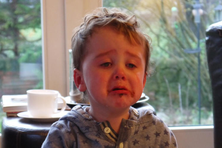 <p>New parents got a kick out of <a href=&quot;http://www.reasonsmysoniscrying.com/&quot; target=&quot;_blank&quot;>Reasons My Son Is Crying</a>, which features strangely adorable photos sent in from parents explaining all the ridiculous reasons why their children are crying. (This particular tot's reason for despair: &quot;There was no more cake . . . because he'd eaten it all.&quot;)</p>