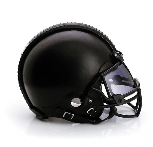 "<p>Public School. ""This is the first time that the Super Bowl will be held in the New York region and we couldn't think of a better way to celebrate by joining Bloomingdale's and the NFL in merging fashion and sports with the creation of these unique helmets,"" said Steven Kolb, CFDA CEO, in a statement on <a href=&quot;http://cfda.com/the-latest/fashion-touchdown-the-cfda-nfl-bloomingdales&quot; target=&quot;_blank&quot;>CFDA's website</a>.</p>"