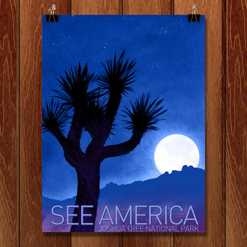 <p>The retro Americana aesthetic of the original Depression era &quot;See America&quot; posters, with their bold colors and flat renderings of our country's most beautiful natural spaces, would fit neatly into any Brooklyn apartment.</p>