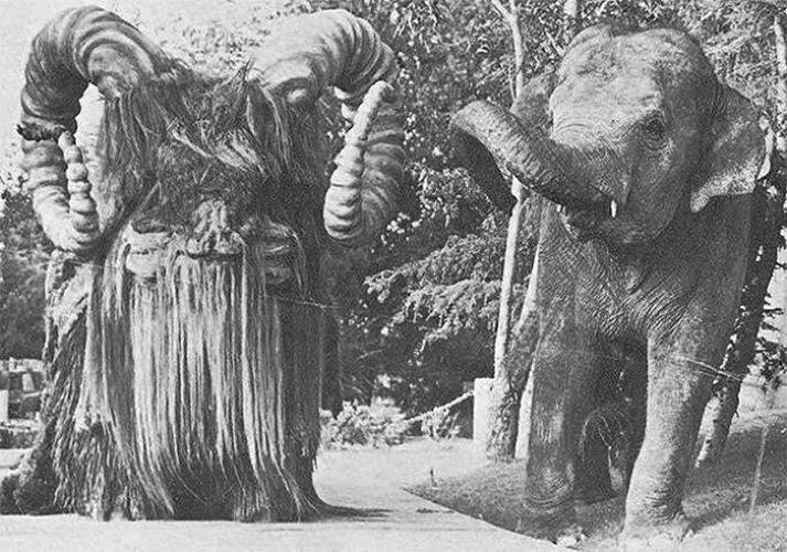 <p>The Bantha costumes might be furry, but the elephants inside them don't seem to mind.</p>
