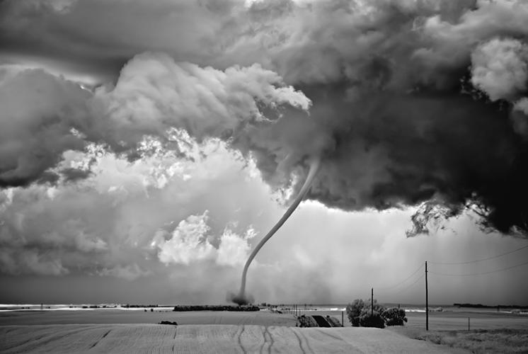 <p>Rope Out, Regan, North Dakota, 2011</p>