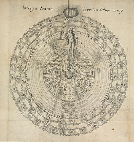 <p>The ancient Greek concept of a &quot;Great Chain of Being&quot; places life on Earth in a hierarchical order with respect to the rest of the universe. In this diagram, the chain starts with Sophia, goddess of wisdom and extends downward to animals, plants, and minerals.</p>