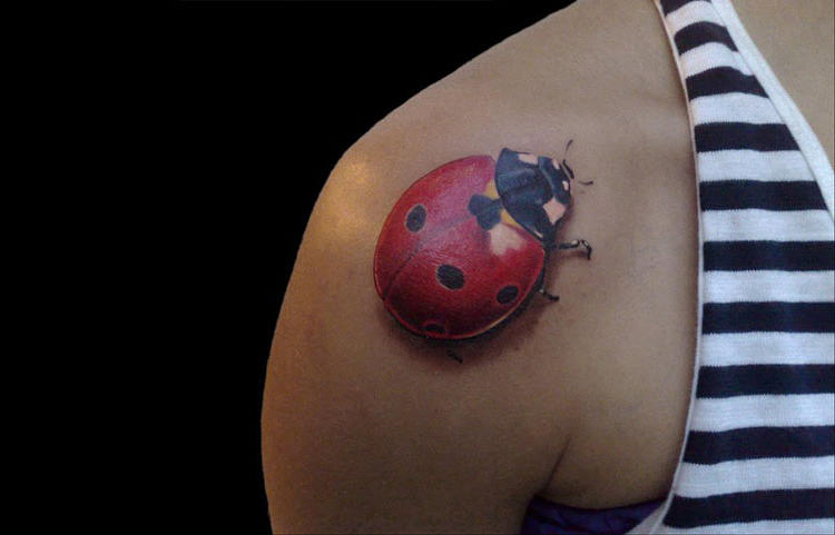 <p>This is a ladybug.</p>