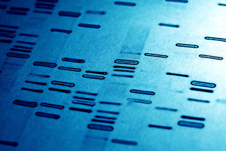 <p>Kids born in 2025 will be tested at the DNA level, and not just once or twice, but continually using nano-probes inserted in the body.</p>