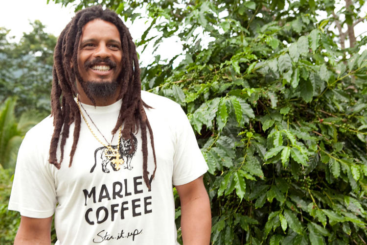 <p>On impulse, Marley forked over his $200,000 and bought the 52-acre property. It didn't take long for Marley to decide that he wanted to start a coffee business--one that was emphatically organic.</p>