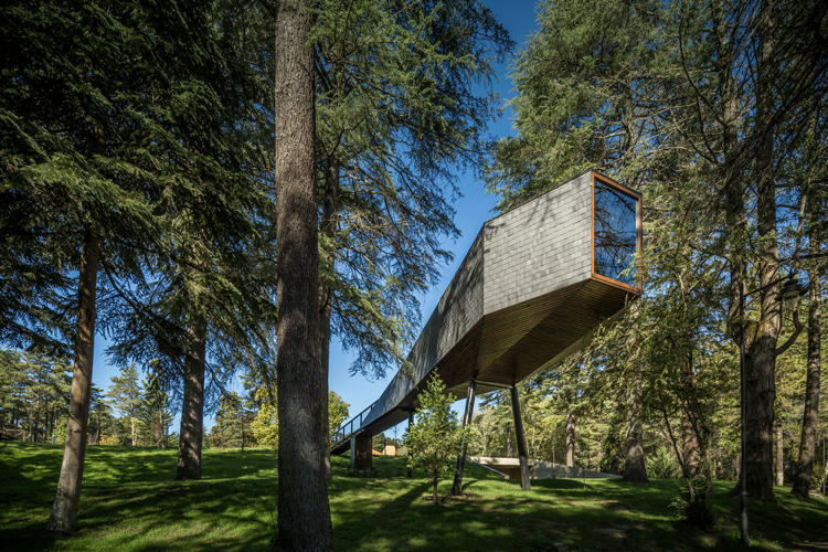 <p>The long, skinny bodies of snakes gliding between trees inspired these designs, in a Portuguese resort park, which can sleep one to two guests.</p>