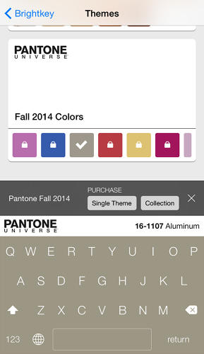 <p>It's just a theme pack that will dress up your Brightkey keyboard with a Pantone swatch.</p>