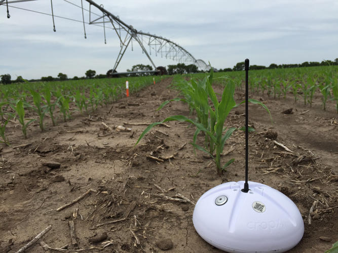 <p>A new app for irrigation and set of sensors is cheap enough that it's aiming for widespread adoption among farmers.</p>