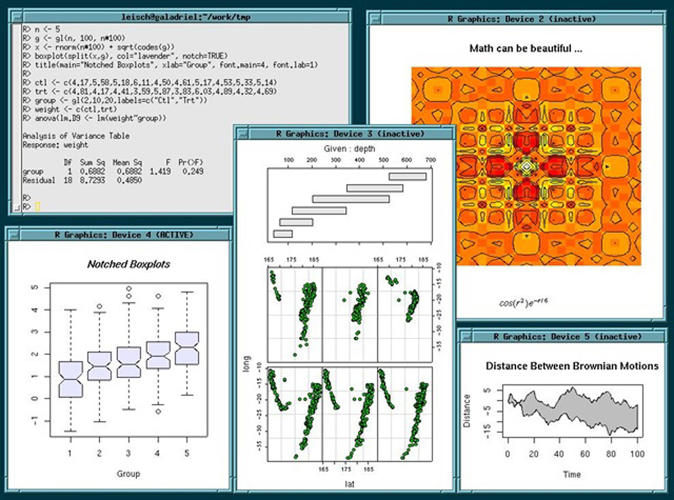 <p>R: A statistical computing environment, useful for making data visualizations.</p>