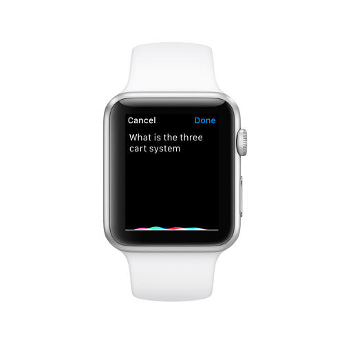 <p>IBM said that residents can ask a wide range of questions on devices like smartphones, a laptop, or even an Apple Watch.</p>