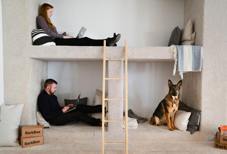 <p>These spacious nooks are a cozy place for employees to relax with their pets and find a quiet place to focus.</p>